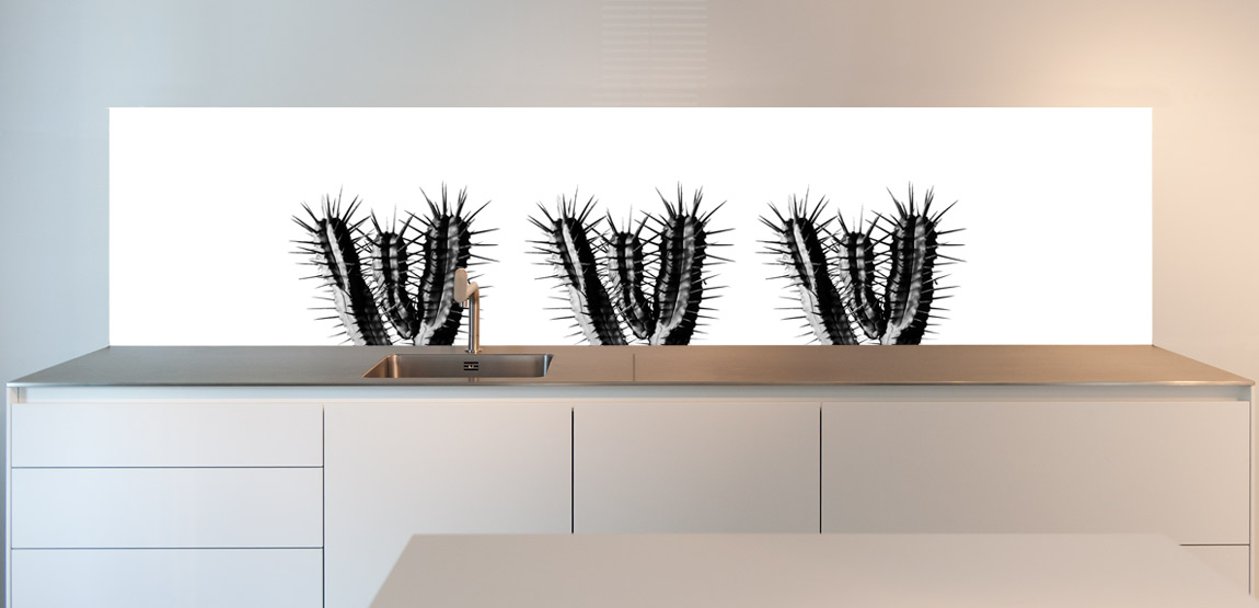 spatwand keuken cactus