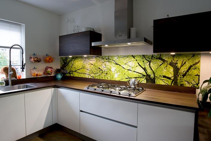 Keuken Achterwand Foto : Glazen keuken achterwanden offerte binnen dagen